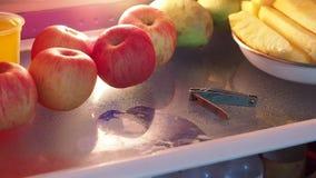 A trouvé un coupe-ongles dans le réfrigérateur clips vidéos