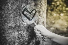 Trouvez l'amour vrai Photo libre de droits