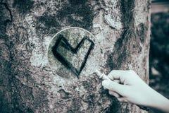Trouvez l'amour vrai Image stock