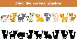 Trouvez l'ombre correcte (les chats) illustration stock