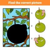 Trouvez la photo correcte, jeu pour des enfants Ver de terre à Apple illustration de vecteur
