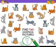 Trouvez le jeu identique de deux photos de chat pour des enfants Image stock