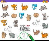 Trouvez le jeu identique de deux photos de chaton pour des enfants illustration stock