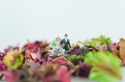 Trouwring en de miniatuur royalty-vrije stock afbeeldingen