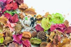 Trouwring en het miniatuurpaar royalty-vrije stock afbeelding