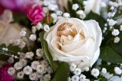 Trouwringen in bloem Stock Afbeelding