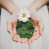 Trouwringen, die op een blad in de handen van de bruid liggen stock afbeeldingen
