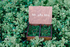 Trouwringen in een houten die doos met mos op het groene gras wordt gevuld Stock Afbeelding