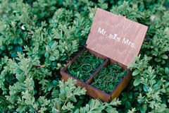 Trouwringen in een houten die doos met mos op het groene gras wordt gevuld Royalty-vrije Stock Foto