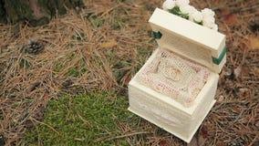 Trouwringen in een houten doos in het hout stock video
