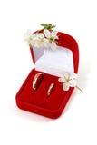Trouwringen en de lentebloemen Royalty-vrije Stock Foto