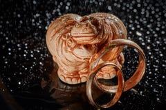 Trouwringen en Hippos Huwelijkskaart, de Daggroet van Valentine ` s De details van de huwelijksdag stock foto