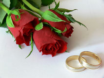 Trouwringen en rozen Royalty-vrije Stock Fotografie