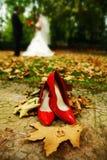 Trouwringen en schoenen stock afbeeldingen