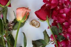 Trouwringen op bloemen Stock Fotografie