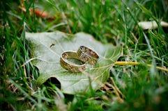 Trouwringen op een blad en een gras Stock Foto's