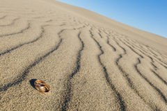 Trouwringen op het zand Stock Fotografie