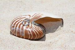 Trouwringen op shell op strand Royalty-vrije Stock Afbeeldingen