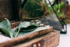 Trouwringen van witgoud in een houten die doos met mos wordt gevuld, Stock Afbeeldingen