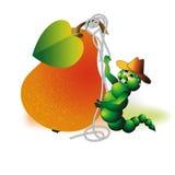 Trovão-tempestade do fruto ilustração stock
