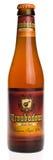 Trovador indiano belga Magma da cerveja da cerveja inglesa pálida isolado no branco Imagens de Stock