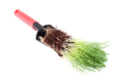 Trowel and grass Royalty Free Stock Photography