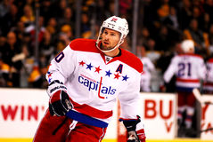 Troy Brouwer Washington Capitals Royalty Free Stock Photo