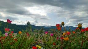 Troyan fotografia stock libera da diritti
