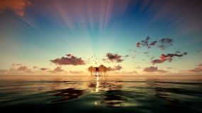 Trpical island isolated by water, seagulls flying at sunrise, camera fly stock footage