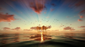 Trpical island isolated by water, seagulls flying at sunrise