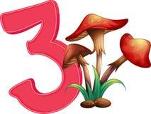 Três cogumelos Fotos de Stock