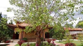 Truc Lam Pagoda in Dalat Vietnam stock video footage