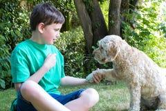 Trucchi d'istruzione del cane di animale domestico del ragazzo in giardino a casa immagini stock