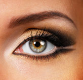 Trucco dorato-marrone di bellezza fotografia stock libera da diritti