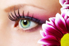 Trucco femminile dell'occhio di bellezza Immagine Stock Libera da Diritti