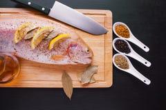 Trucha fresca e ingredientes para preparar platos de pescados en la tabla negra Imagen de archivo