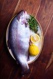 Trucha o salmones crudos frescos con el limón y las hierbas Imagenes de archivo