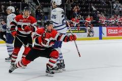 Truchas arco iris de Mississauga contra Ottawa 67 Juego de hockey Fotos de archivo libres de regalías