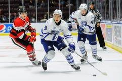 Truchas arco iris de Mississauga contra Ottawa 67 Juego de hockey Fotografía de archivo libre de regalías