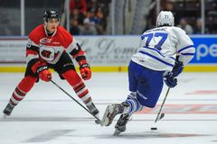 Truchas arco iris de Mississauga contra Ottawa 67 Juego de hockey Foto de archivo