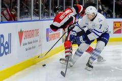Truchas arco iris de Mississauga contra Ottawa 67 Juego de hockey Fotografía de archivo