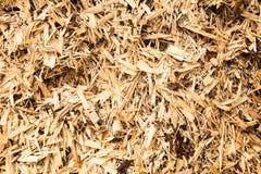 Trucioli di legno Fotografia Stock Libera da Diritti