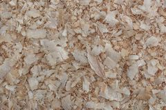 Trucioli di legno Fondo, struttura Fotografie Stock Libere da Diritti