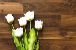 Trucioli falsi e del tulipano fotografie stock libere da diritti