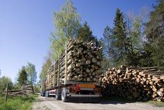 Truck με την ξυλεία Στοκ εικόνες με δικαίωμα ελεύθερης χρήσης
