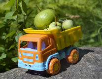 Truck With Apples Royalty Free Stock Images