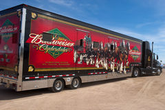 Truck carrying Budweiser Clydesdales. APACHE JUNCTION, AZ - FEBRUARY 26: Trucks carrying the Budweiser Clydesdale horses arrive at the Lost Dutchman Days rodeo royalty free stock photo