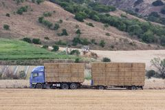 Truck carrying hay in his body. Making hay for the winter stock photos