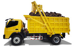 Truck carrying palm harvest Royalty Free Stock Image
