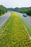 Truck driving on yellow flower lined state highway in rural Virginia Royalty Free Stock Photo